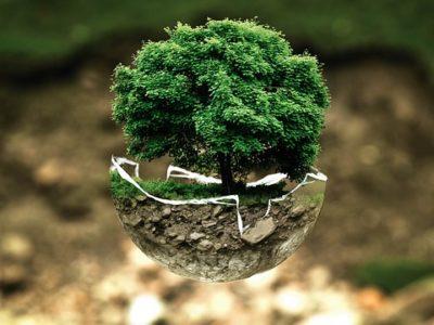 Découvrez Eco reso, plateforme écologique et citoyenne